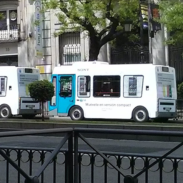 Versión compact de bus, móvil y árbol