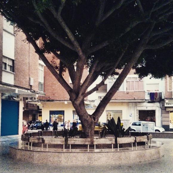 En el barrio Nuevo San Andrés, Málaga.