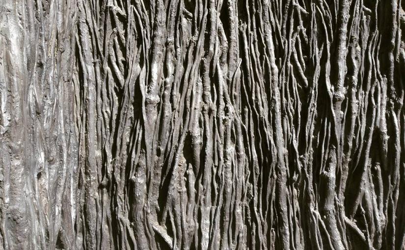 El bosque originario