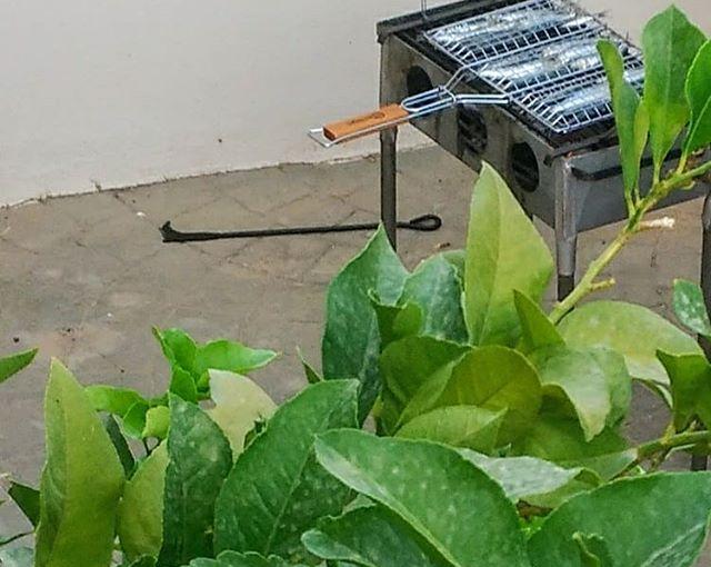 Así comienza la preparación del mejor plato veraniego por estos lares